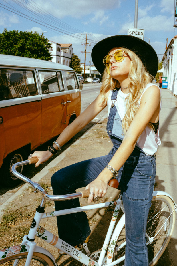 wildfox-and-sole-bike