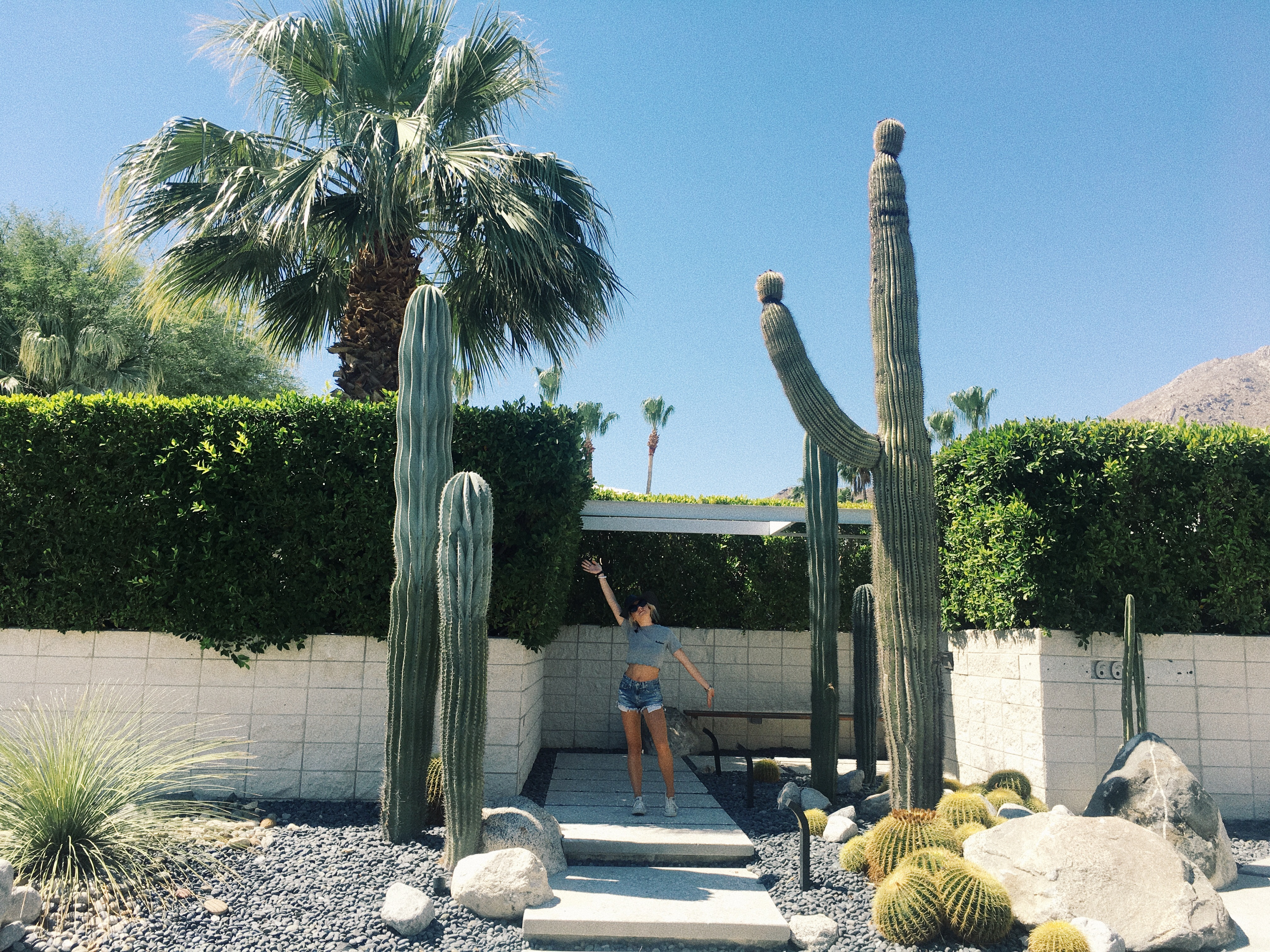 A few weekends ago I headed to Palm Springs for a long weekend with a bunch  of babes to celebrate Amanda Millers bachelorette  Since all of those babes  also. Palm Springs with Homeaway   High End Hippie